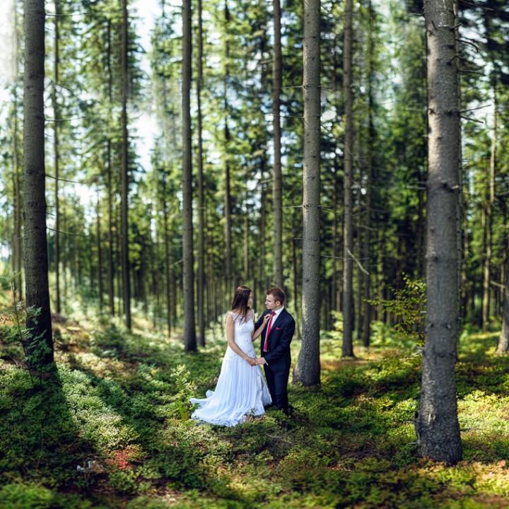 Plener ślubny – Ania i Patryk
